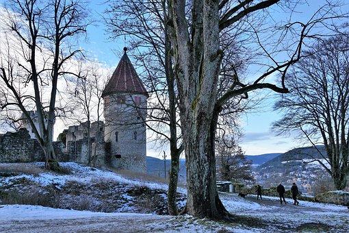 Tree, Winter, Autumn, Snow, Season