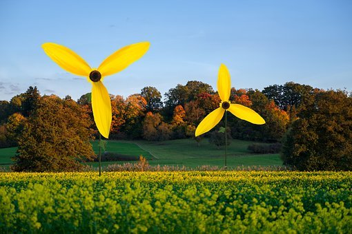 Pinwheel, Wind Power, Wind Energy, Energy, Nature