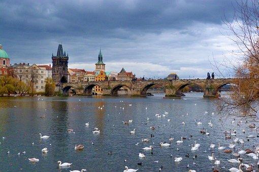 Prague, Charles Bridge, River, Bridge, City