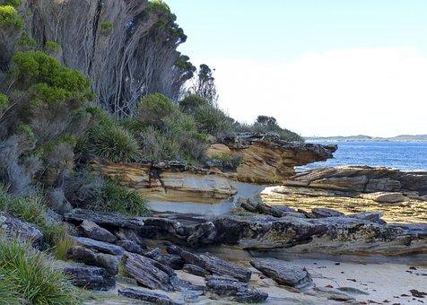 Rocky, Beach, Shoreline, Coastline, Water, Vacation