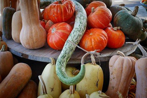 Pumpkin, Autumn, Food, Halloween, Vegetables, Market