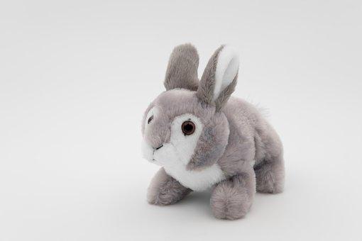Hare, Plush Bunny, Cuddly Bunny, Teddy Bear