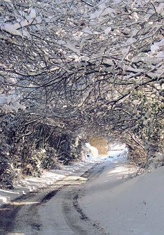 Landscape, Countryside, Nature, Winter, Snow, Frost