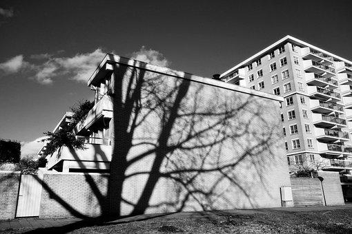 Shadow, Building, Tree, Tree Shadow, Apartment Block