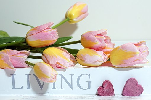 Tulips, Spring, Joy Of Life, Live, Style, Lifestyle