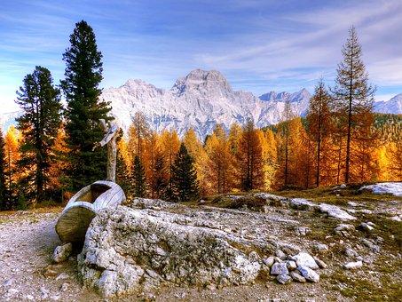 Wood, Snow, Mountain, Landscape, Nature, Scenic, Tree