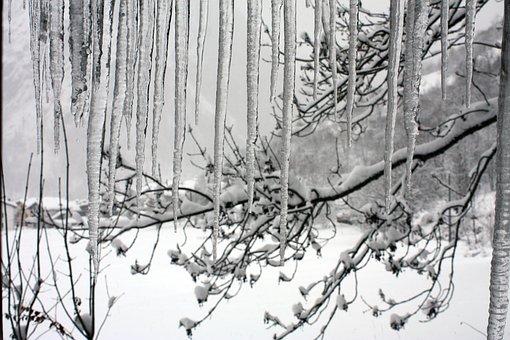Winter, Snow, Courmayeur, Cold, Ice, Valle D'aosta