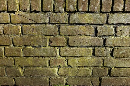 Brick Wall, Mold, Moldy Brick Wall, Green Brick