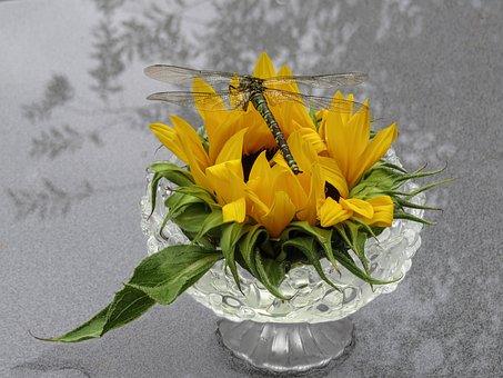 Dragonfly, Sun Flower, Decoration, Glass Bowl