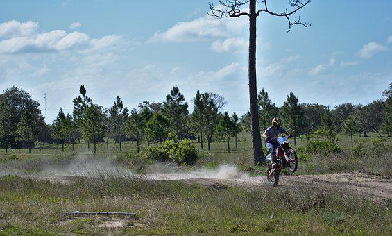 Wheele, Ride, Power, Tree, Nature, Landscape, Dust