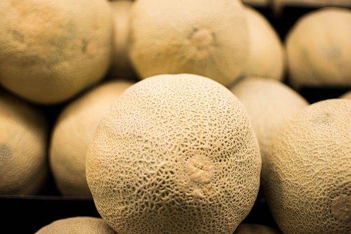 Fruit, Food, Healthy, Fresh, Isolated, Melon, Ripe