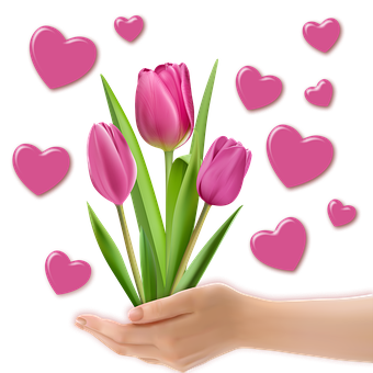 Png Image, Decoration, Tulips, Heart, Valentine, Hands