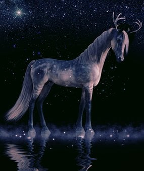 Cavalry, Nature, Mammal, Animal, Horse, Waters