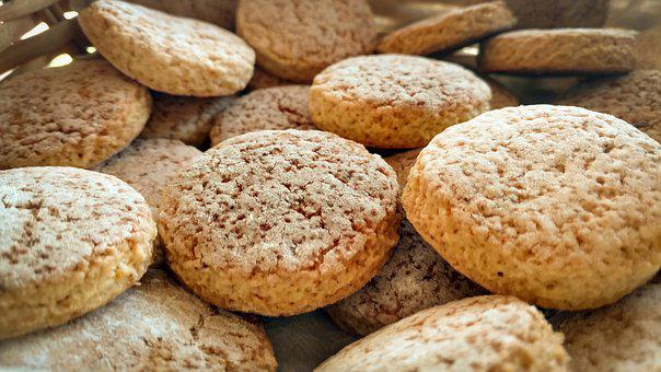 Cookies, Orange, Picnic