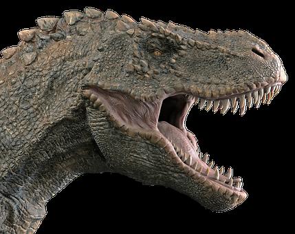 Dinosaur, Tyrannosaurus, Tyrannosaur, Dino, T-rex, Rex