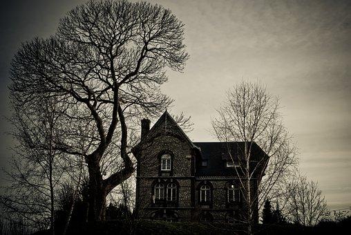 Tree, Wood, Dramatic, House, Witch, Fear, Strange