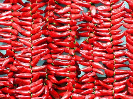Food, Vegetable, Chili, Grow, Fruit, Red, Pepper, Spice
