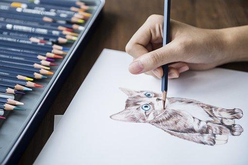 Adorable, Animal, Art, Artist, Bright, Cat, Color