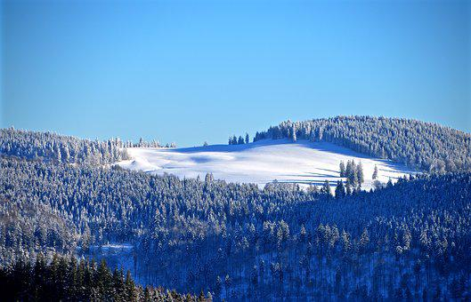 Black Forest, Ski Run, Winter Forest, Eiswald, Hill