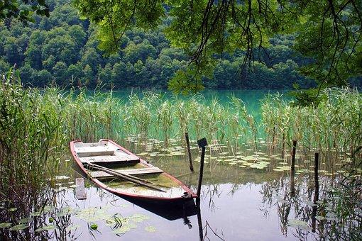 Body Of Water, Wood, Nature, Lake, Jura