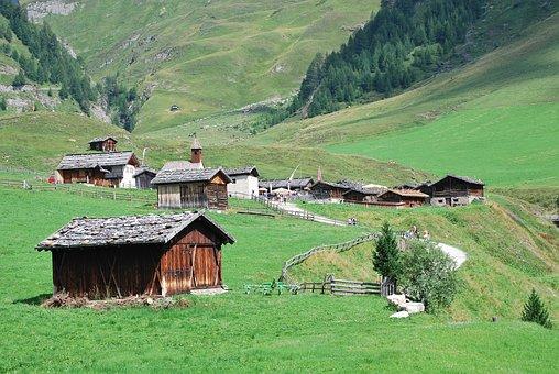 House, Hovel, Landscape, Farm, Mountain, Nature, Cow