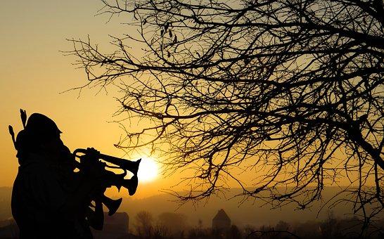 Nature, Landscape, Sunset, Silhouette, Dawn, Dusk, Tree