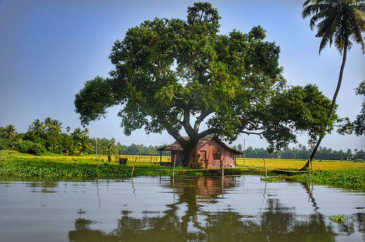 Alleppey, Backwaters, Kerala, India, House, Wooden