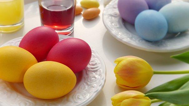 Egg, Easter, Food, Color, Background, Breakfast