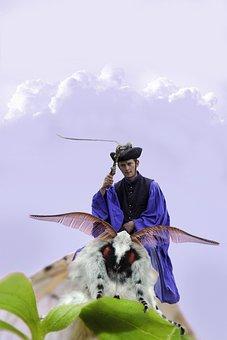 Nature, Butterfly, Reiter, Flutter Man, Fantasy