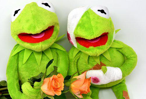 Kermit, Greetings, Frog, Get Well Soon, Roses, Soft Toy