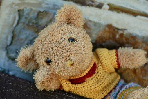 Teddy, Teddy Bear, Bears, Soft Toy, Stuffed Animal