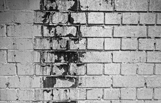 Brick Wall, White Wall, White Brick Wall, Mold