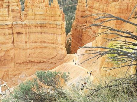 Hiking, Bryce Canyon, National Park, Canyon, Park