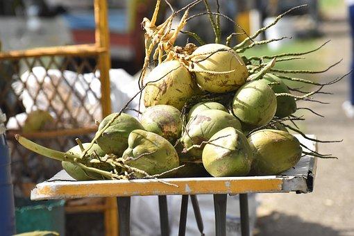 Coconuts, Vendor, Raw, Food, Drink, Healthy, Caribbean