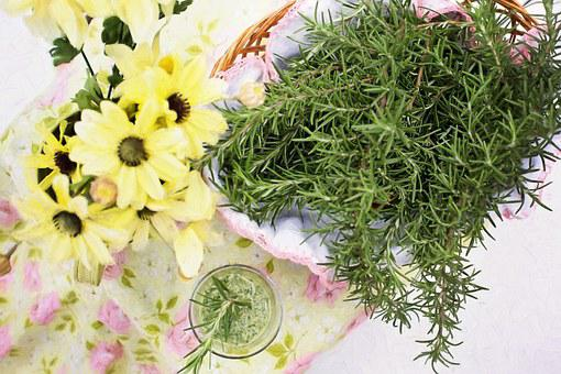 Rosemary, Herb, Food, Healthy, Spices And Herbs