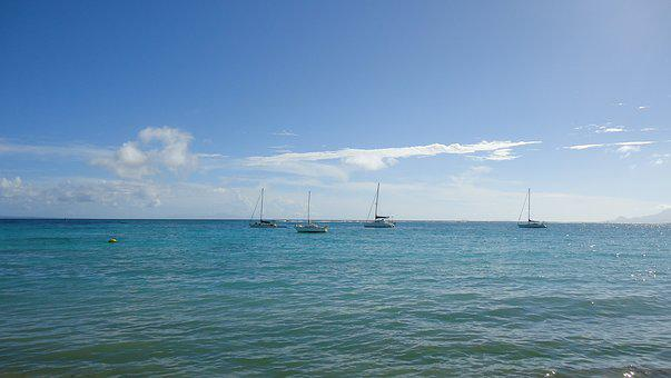 Guadeloupe, Sea, St Anne, West Indies, Holiday