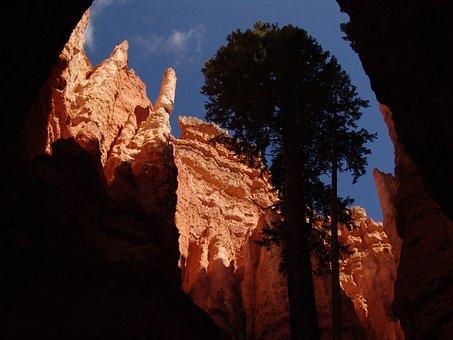Hoodoos, Bryce Canyon, Bryce Canyon National Park