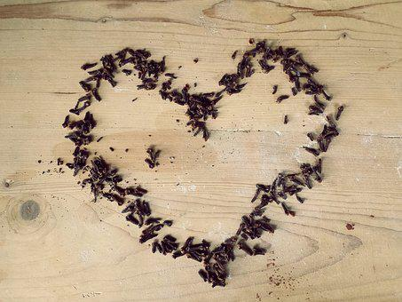 Heart, Love, Feeling, Valentine's Day, Cloves, Spices