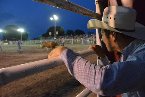 Cowboy, Rodeo, Hat, American, Western, Horse, Ranch