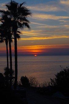 Sunset, Palm Trees, Mood, Sea, Sun, Mauritius, Nature