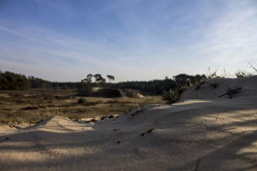 Sand, Nature, Heide, Air, Netherlands, Veluwe, View