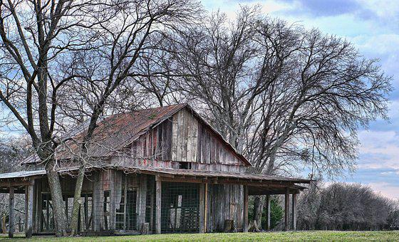 Tree, Wood, House, Outdoors, Barn, Old Barn