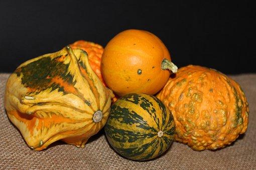 Pumpkin, Halloween, Autumn, Food