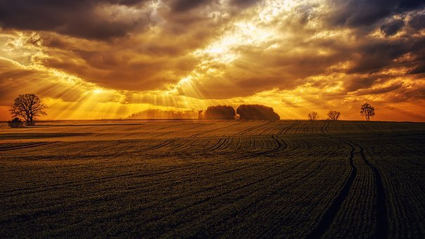 Sunset, Panorama, Nature, Dawn, Landscape, Field