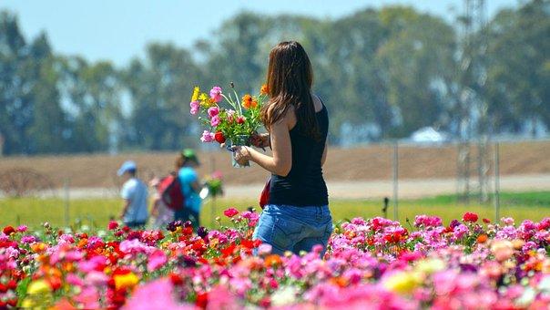 Flower, Nature, Summer, Outdoors, Park, Love, Woman