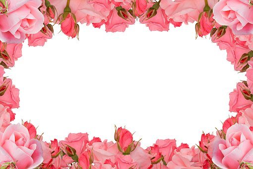 Roses Frame, Flower, Rose, Floral, Flora, Romance, Love