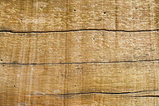 Wood, Tree, Texture, Abstract, Motif, Detail Shots
