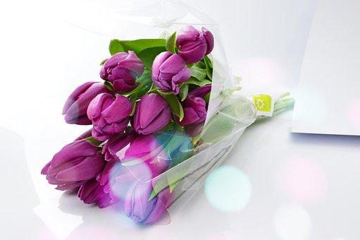 Flower, Gift, Bouquet De Fleurs, Celebration, Floral