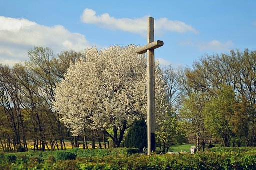 Cross, Cemetery, Spring, Tree, Sky, Nature, Landscape