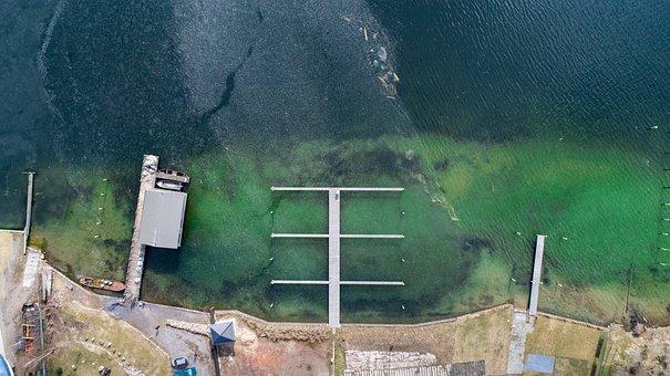 Waters, Nature, Web, Lake, Bank, Green, Idyll, Water